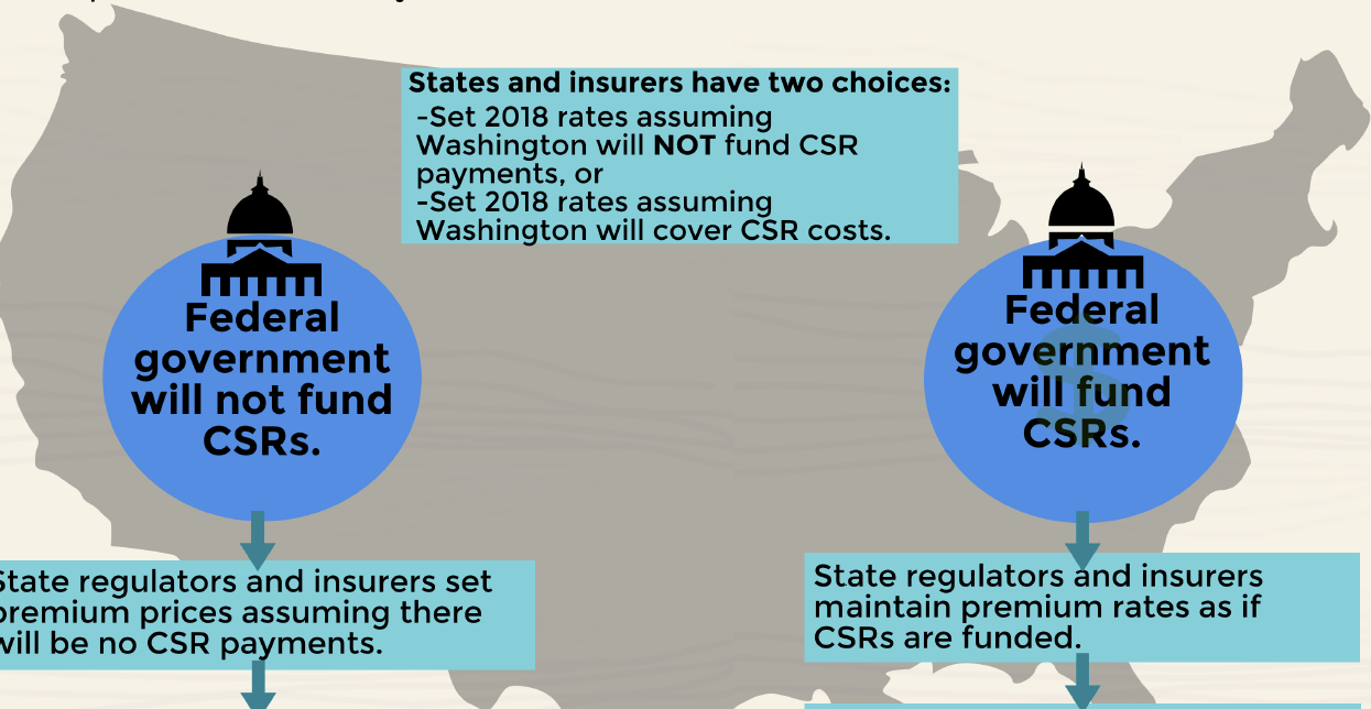 Explore the Limited Choices States Face as Washington Debates CSR Payments